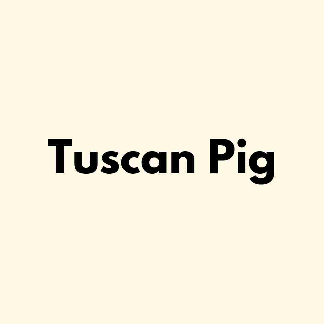 Tuscan Pig Italian Kitchen & Catering